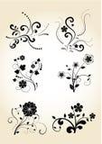 элементы конструкции флористические Стоковое Фото