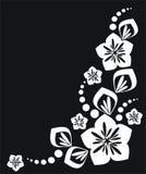 элементы флористические Стоковое Изображение
