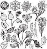 элементы 1 абстрактные конструкции флористические иллюстрация вектора