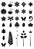 элементы dezign флористические Стоковые Фотографии RF