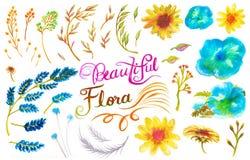 Элемент картины акварели цветка и лист Стоковое Фото