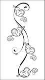 элемент флористический Стоковые Изображения RF