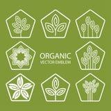 Эмблема вектора установленная абстрактная органическая, вензель плана, символ цветка Стоковые Изображения RF