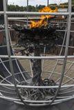 Эмигрантское пламя в новом Ross стоковые изображения