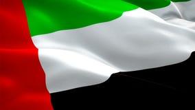 Эмираты сигнализируют видео развевая в ветре Реалистические ОАЭ сигн сток-видео
