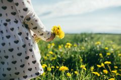 Эмоции лета радостные под солнцем стоковые фото