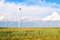 энергии окружающей среды ветер турбин источника ландшафта fiendly Стоковые Изображения