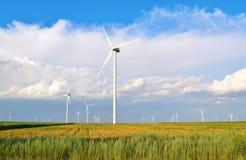 энергии окружающей среды ветер турбин источника ландшафта fiendly Стоковые Изображения RF