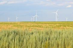 энергии окружающей среды ветер турбин источника ландшафта fiendly Стоковые Фото