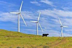 Энергия ветра восточный Вашингтон. Стоковые Фотографии RF