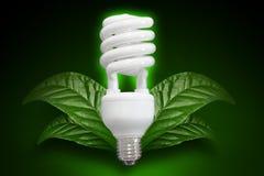 Энергосберегающая электрическая лампочка Стоковые Фото