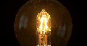 Энергосберегающей изолированный электрической лампочкой проблескивать зарева нити медленный видеоматериал