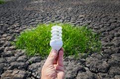 Энергосберегающий светильник в руке Стоковая Фотография