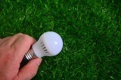 Энергосберегающий, человек держит свет шарика в предпосылке лужайки Стоковые Фото
