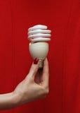 Энергосберегающий lightbulb Стоковые Изображения