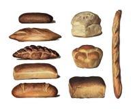 Энциклопедия 1911 ` s бакалейщика, винтажное собрание различных типов испеченных хлебцев хлеба Цифров увеличенное rawpixel иллюстрация штока