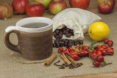 Эпидемия гриппа Традиционная домашняя обработка для холодов и гриппа Чай, мед и цитрус плода шиповника стоковые фотографии rf