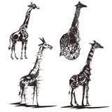 Эскизы чернил жирафов Стоковая Фотография RF