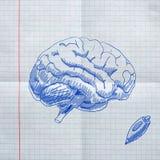 Эскизы школы на checkered бумаге Стоковые Фото