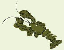 Эскиз большой зеленой иллюстрации омара Стоковые Изображения RF