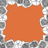 Эскиз вектора шаржа плодоовощ смоквы для знамени или открытки иллюстрация вектора
