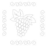 Эскиз виноградины нарисованный рукой иллюстрация штока