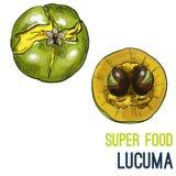 Эскиз еды полного цвета супер нарисованный рукой бесплатная иллюстрация