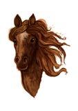 Эскиз коричневой аравийской лошади конематки бесплатная иллюстрация