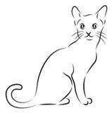 Эскиз кота Стоковые Фото