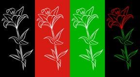 эскиз лилии Стоковое фото RF