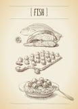 Эскиз мяса Стоковая Фотография