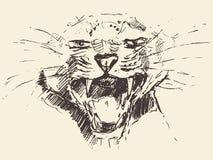 Эскиз представления головы леопарда атакуя нарисованный стилем иллюстрация штока