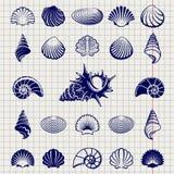 Эскиз раковин моря Стоковые Фотографии RF