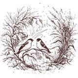 Эскиз рамки зимы иллюстрация вектора