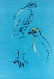 Эскиз сокола Стоковые Изображения RF