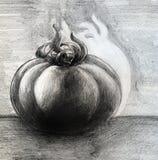Эскиз томата Стоковая Фотография RF