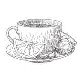 Эскиз чашки нарисованной рукой с кружкой лимона и имбиря горячих кофе питья, чая etc изолированного на белой предпосылке иллюстрация вектора