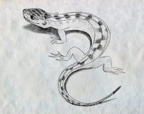 Эскиз ящерицы Стоковые Изображения