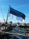 Эстонский развевать флага Стоковые Изображения RF