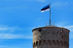 Эстонский флаг на высокорослой башне Hermann в старом городке Таллина, Эстонии Стоковое Изображение
