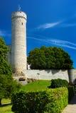 Эстонский флаг на высокорослой башне Hermann на холме Toompea в Таллине, Эстонии Стоковое фото RF