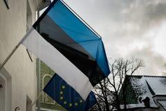 Эстонский флаг, флаг Эстонии, отказываясь Стоковые Изображения