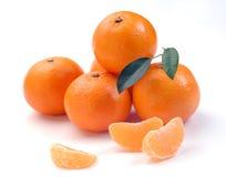 этапы clementines Стоковая Фотография