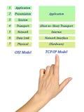 Эталонная модель OSI и модель TCP/IP слои Стоковая Фотография RF