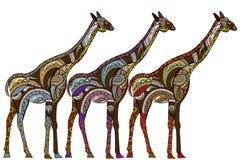 этнические giraffes Стоковая Фотография RF