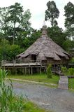 Этнический дом, триба Калимантана Bidayuh Стоковое Изображение RF