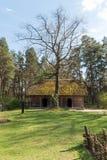 Этнографический деревянный дом журнала Стоковые Фотографии RF