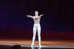Этот вечный сказ балета Стоковые Изображения