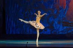 Этот вечный сказ балета Стоковые Фотографии RF