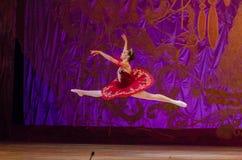 Этот вечный сказ балета Стоковая Фотография